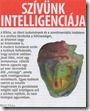 szivunk-intelligenciaja_thumb3